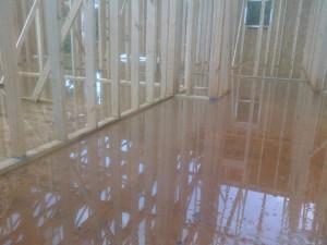 Wet House / Rain